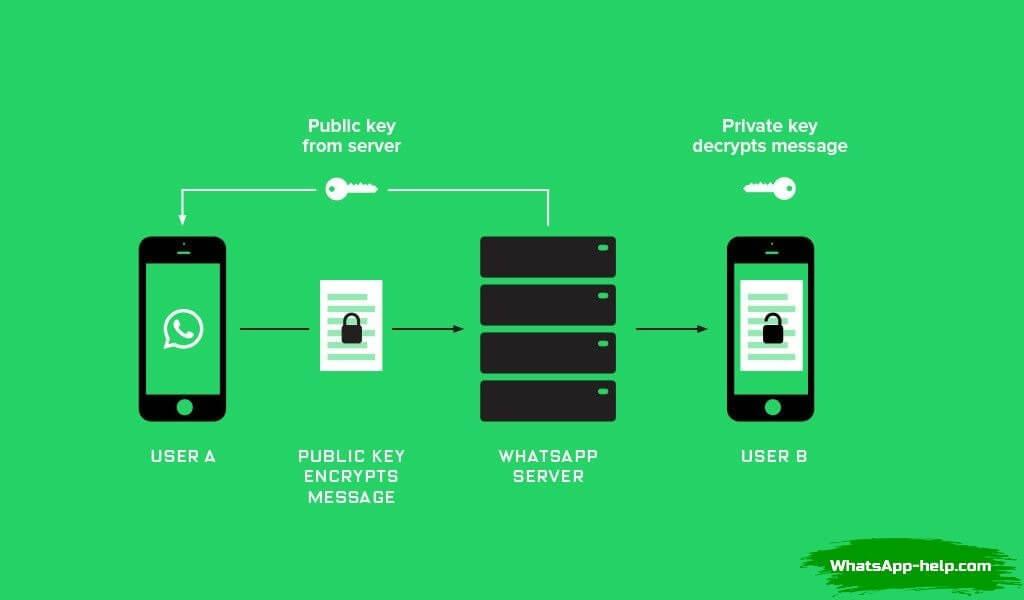 в whatsapp что такое сквозное шифрование