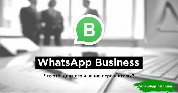что значит бизнес аккаунт в ватсапе