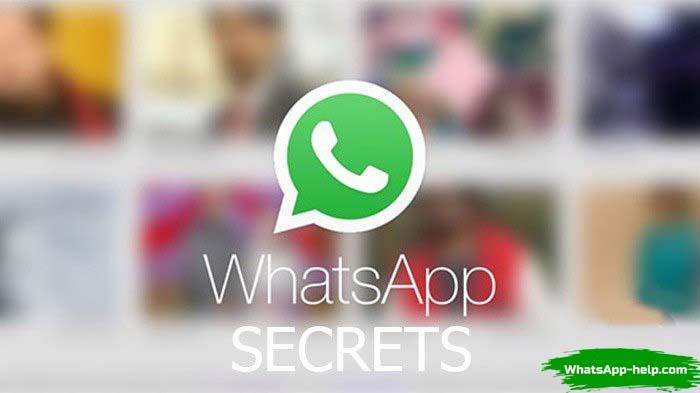 whatsapp hack скачать бесплатно на компьютер
