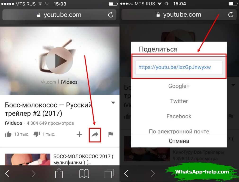 где скачать видео для whatsapp