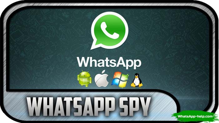 spy for whatsapp