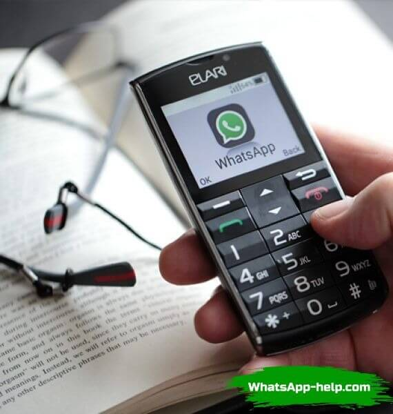 телефон кнопочный с вацапом