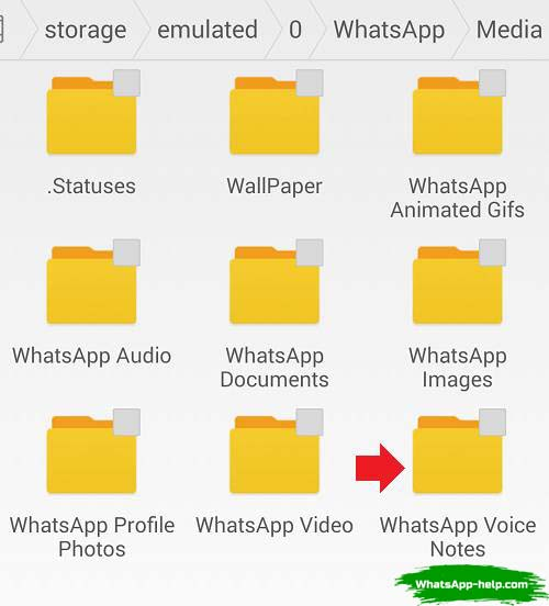 что за папка whatsapp voice notes