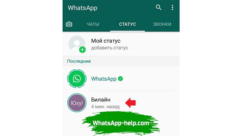 ватсап не показывает статусы контактов