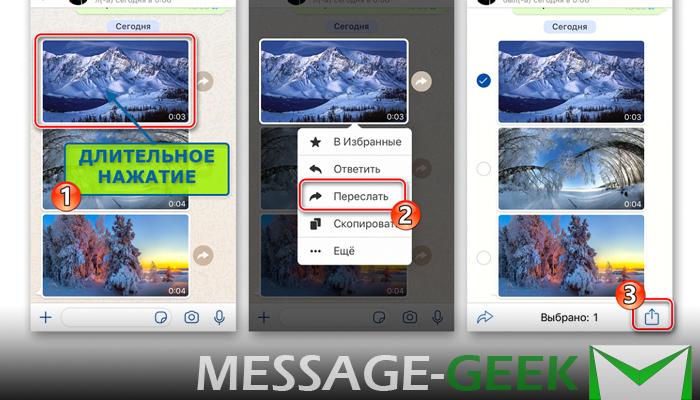Как из Ватсапа сохранить фото в галерею на Android и iPhone