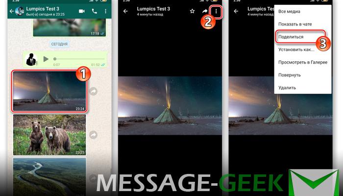 Как сохранить фото из ватсапа на телефон