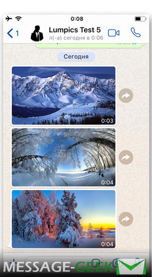 Как из Ватсапа сохранить фото в галерею на Android